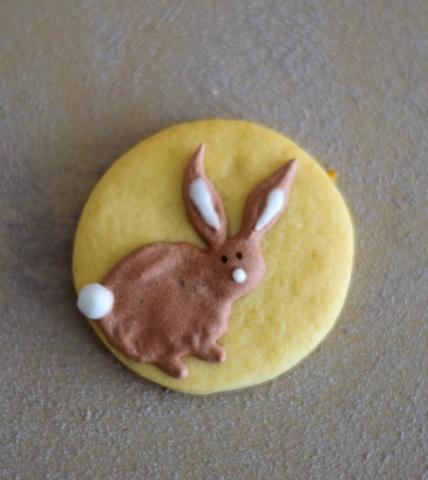 Poskusni zajček - piškot