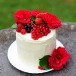 Torta mascarpone-gozdni sadeži (brez jajc)