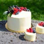 Poroka Mirjam & Jure: Enoporcijske tortice
